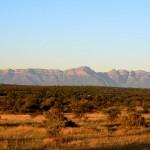Krüger Nationalpark bei Sonnenaufgang in Südafrika