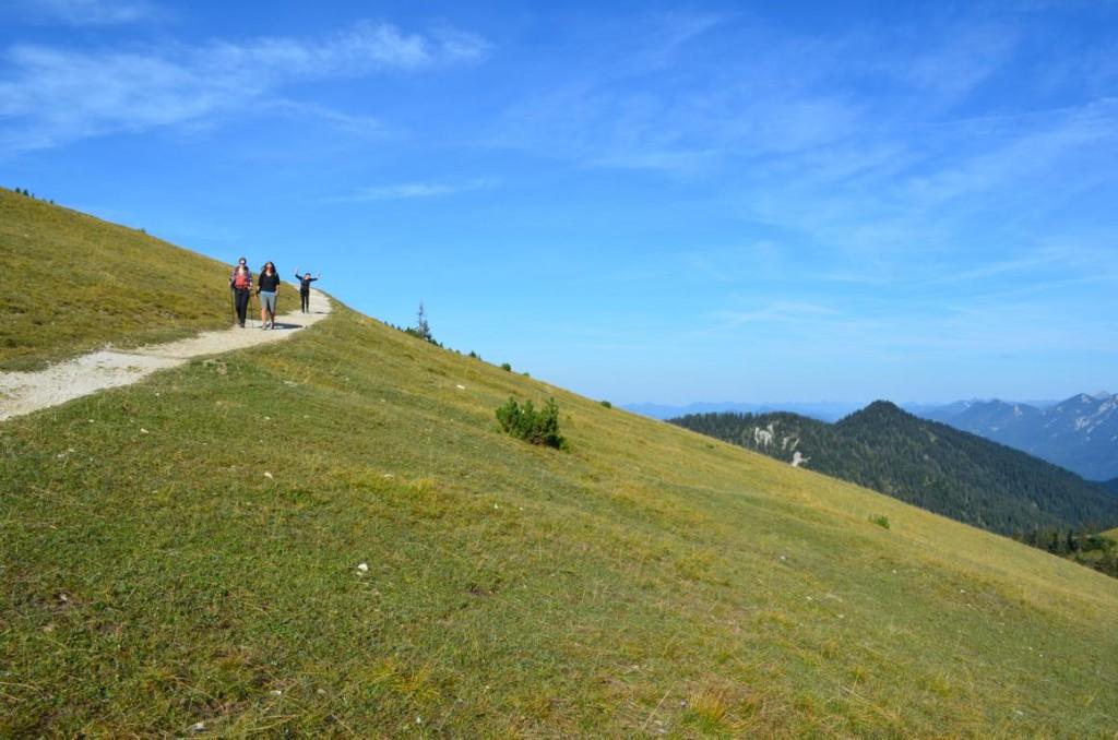 Über grüne Almwiesen und schattige Waldwanderwege: Die Wank Rundwanderung.