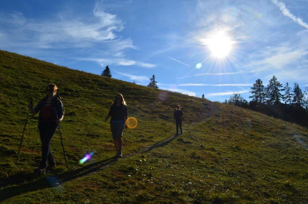 Steiler Abstieg vom Wankgipfel zur Esterbergalm.