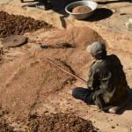 Bauer in Nepal schlägt Hirse
