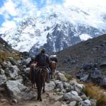 Wer keine Kraft mehr hat kann sich ein Pferd mieten: Salkantay Trail.