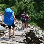Wandern durch den Dschungel von Peru: Moskitos inklusive!