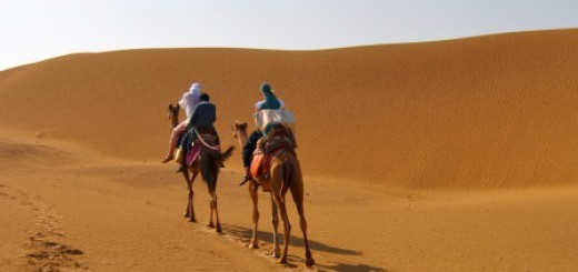 Auf dem Kamel durch die Wüste Thar