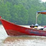 Mit dem Boot zum Bako Nationalpark