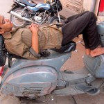 Nickerchen in Jaipurs Straßen