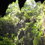 Blick vom Clear Water Cave Borneo