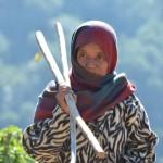 Feldarbeiterin bei Landruk Nepal