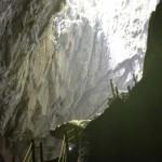 Waghalsige Klettereinlagen im Naturparadies Borneo