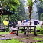 Base Camp im Regenwald: Hier startet die Wanderung zu den Pinnacles