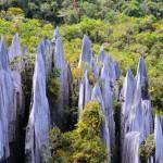 Felsnadeln im Regenwald: Die Pinnacles auf Borneo.