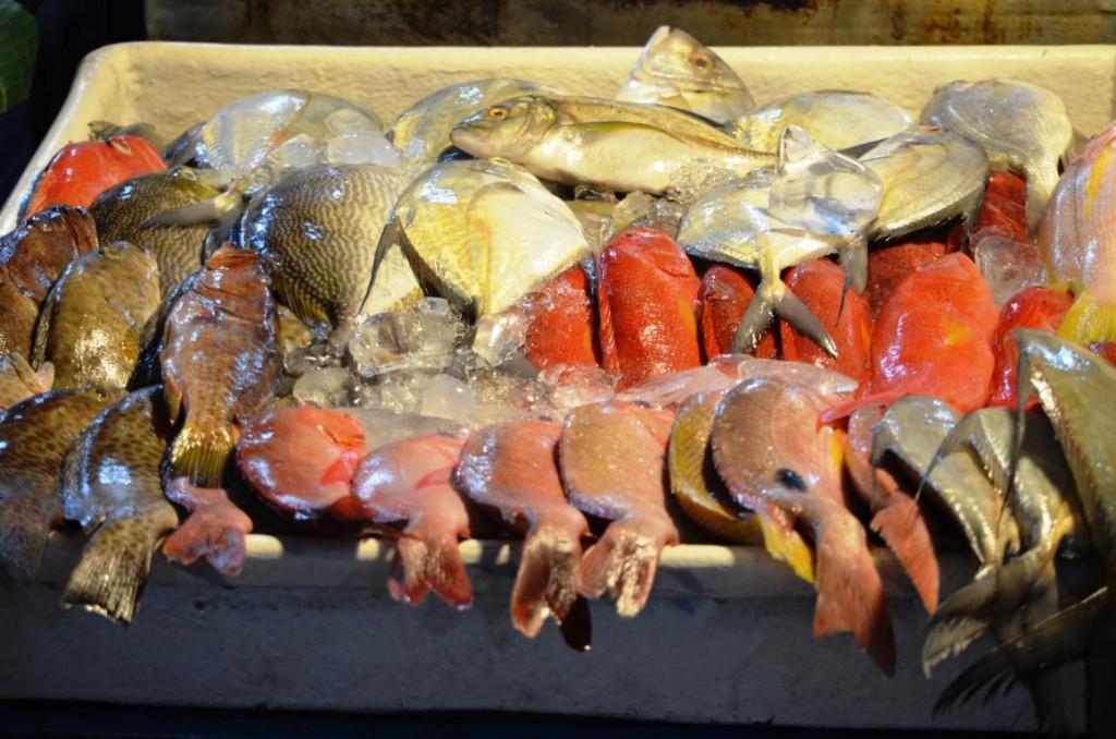 Frischer Fang direkt auf den Tisch: Fischbasar in Kota Kinabalu