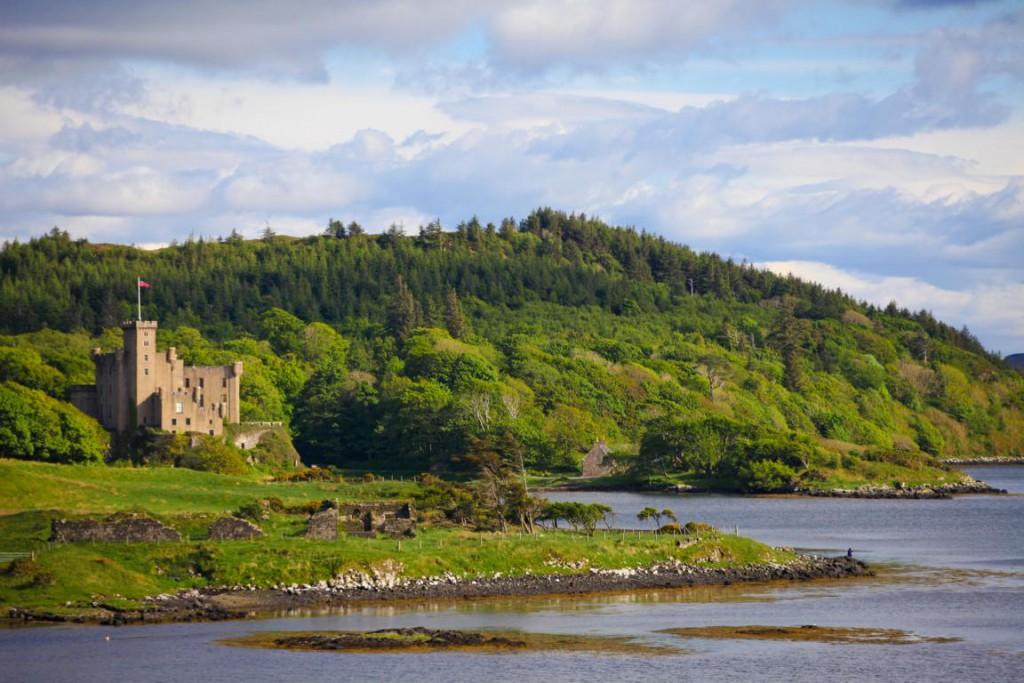 Vor dem Dunvegan Castle baden Seehunde im kalten Meer.