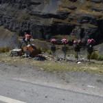 Kreuze am Straßenrand der Todesstraße von La Paz.
