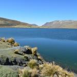Türkis blaues Wasser und Lamas auf dem La Chumbre Pass.
