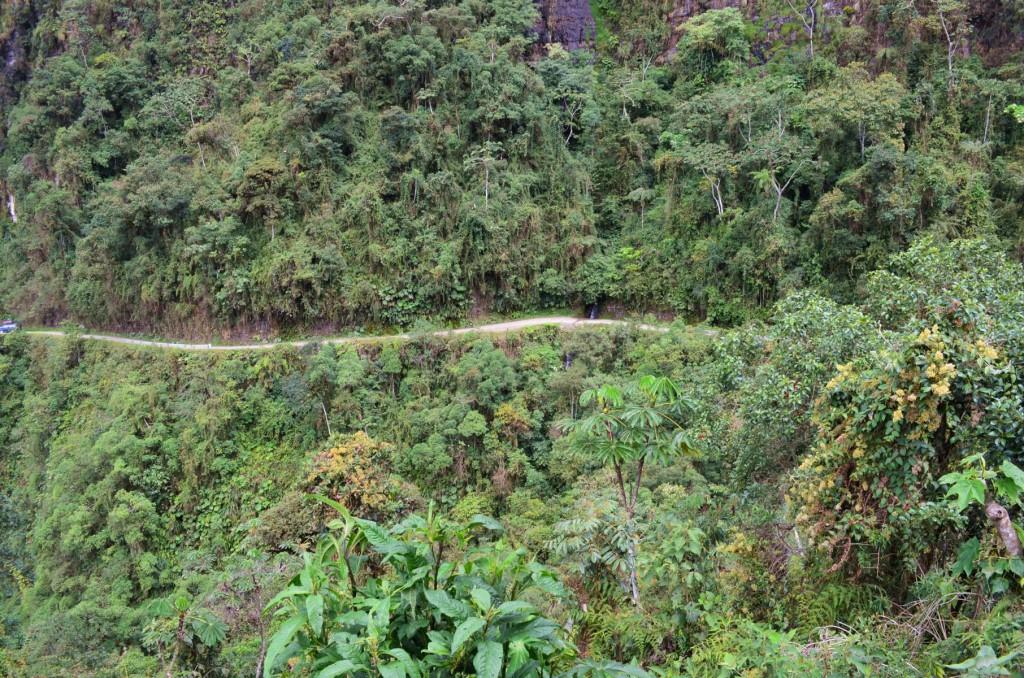 Durch den Regenwald  bis nach Coroico: 65 Kilometer Downhill Spaß.