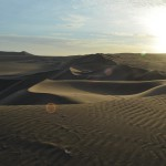Wüstenfeeling in der Oase Huacachina