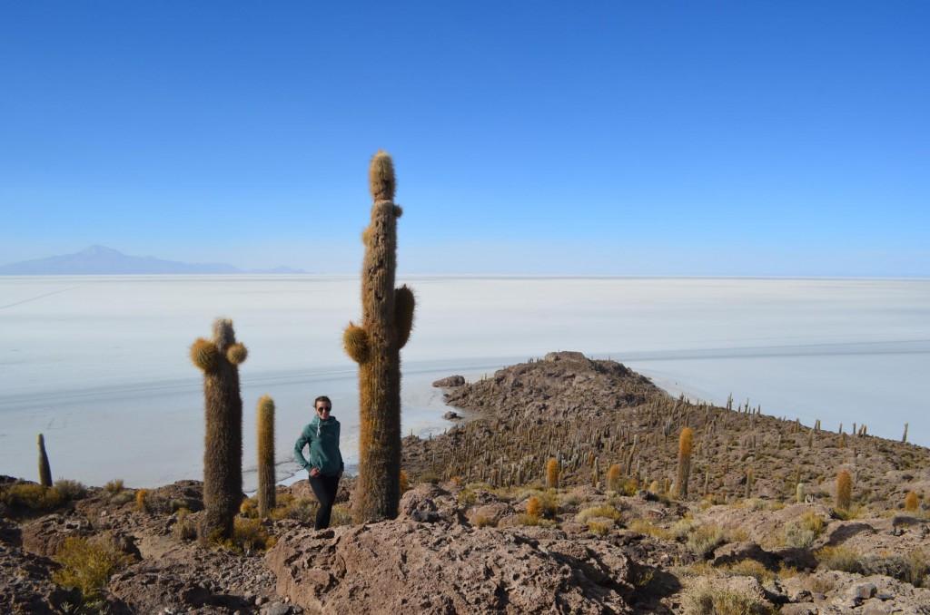 Isla Incawasi: Die Kakteeninsel in der Salzwüste.
