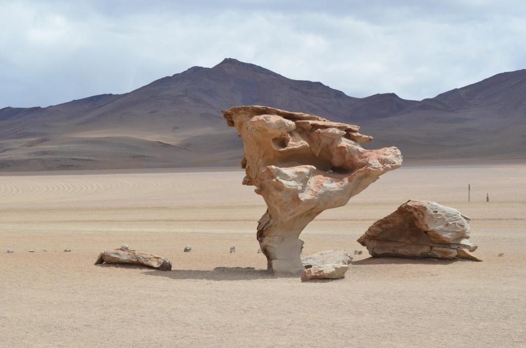 Arbol de Piedra: Der steinernde Baum in Bolivien.