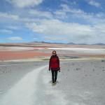 Laguna Colorada: Ein Traum in Pink!