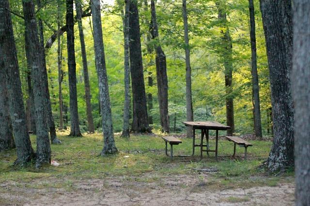 Abendessen in der freien Natur: Schluss mit der Sitzordnung!