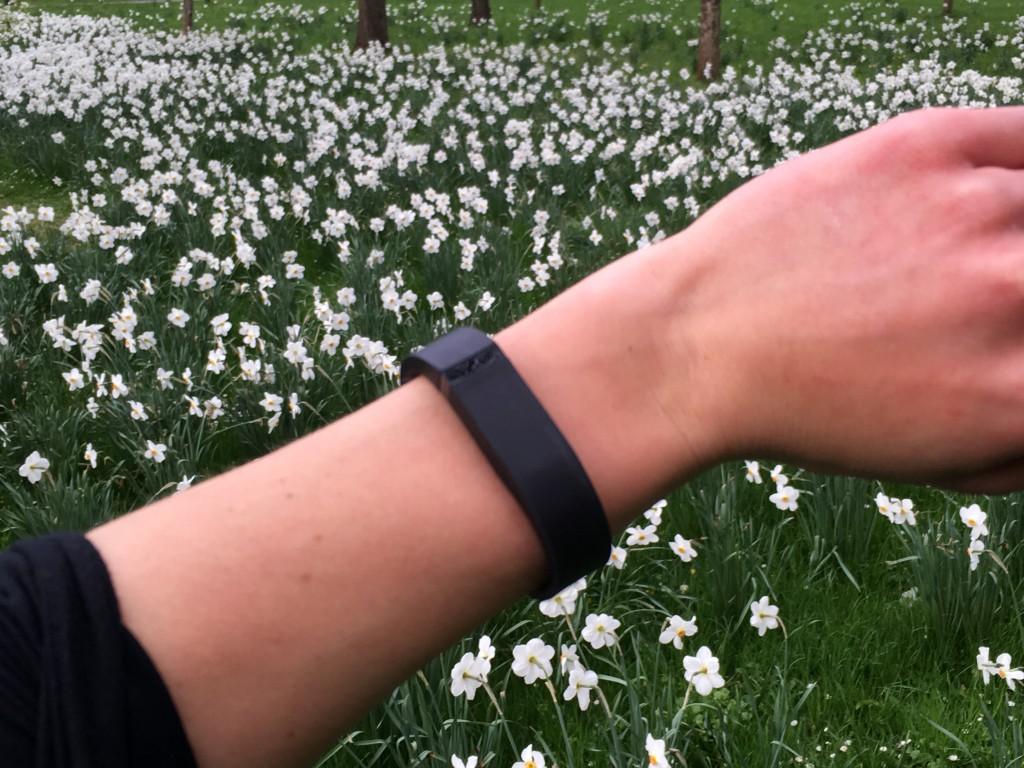 Motivation fürs Laufen: Fitnessarmband Fitbit Flex im Test