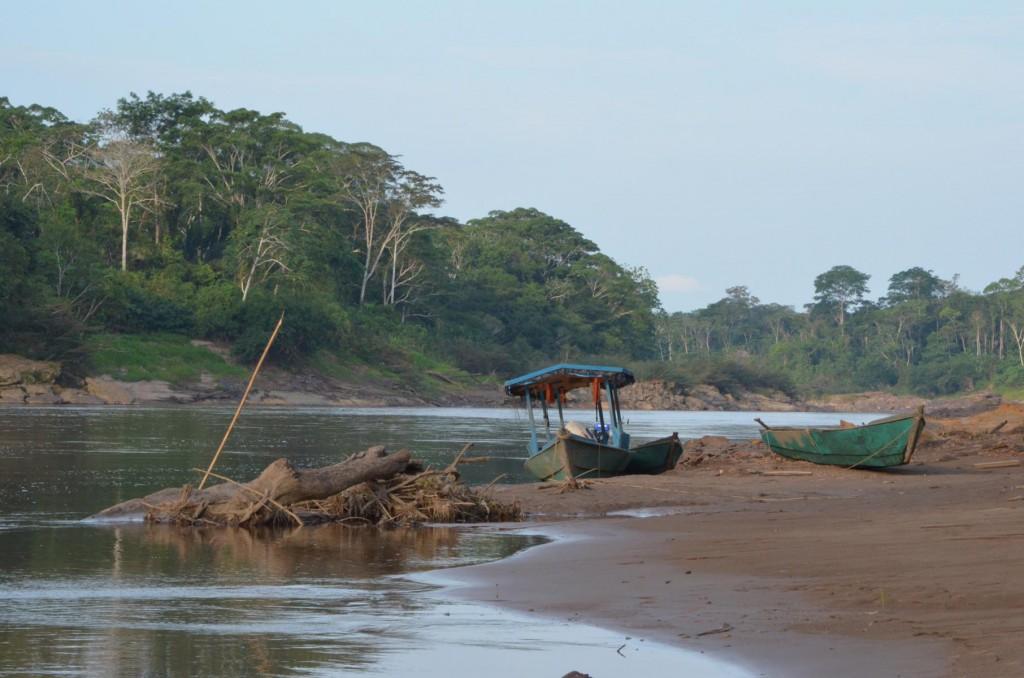 Flusssafari im Tambopata Nationalpark Peru: Gibt es hier eigentlich auch Krokodile?