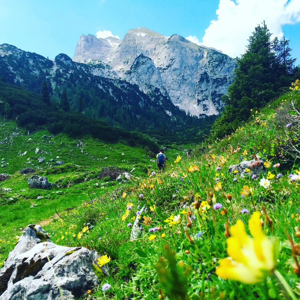 Bergfrühling auf der Reiter Alpe