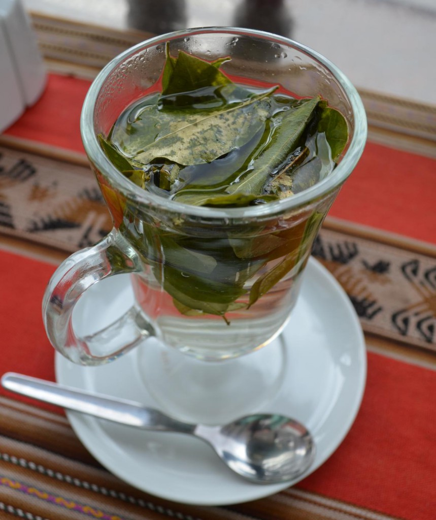 Ein Koka-Tee am Morgen vertreibt Kopfschmerzen und Sorgen!