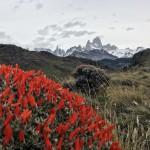 Wanderparadies El Chalten: Mirador de los Condores und Mirador de las Aguilas