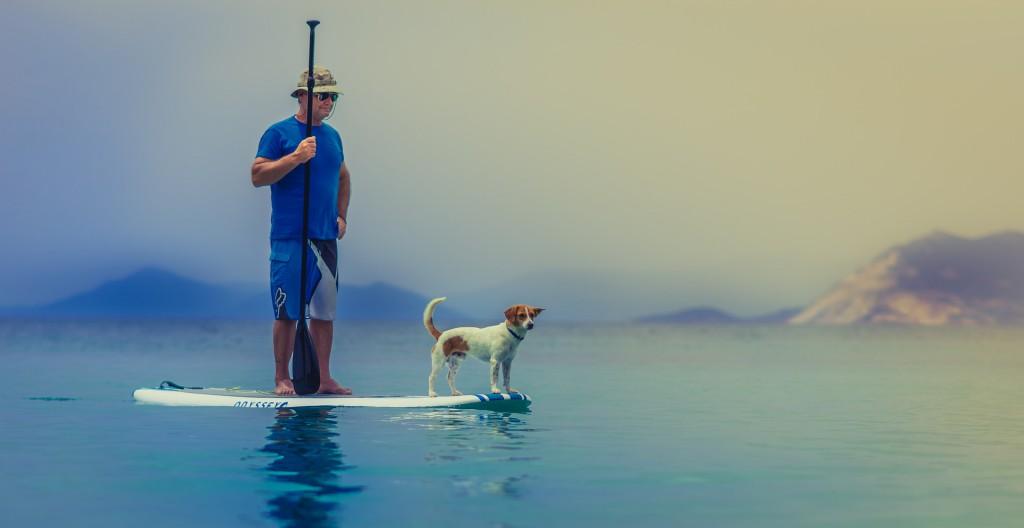 Weltreise mit Hund: Vor allem in Thailand reist es sich prima mit Vierbeiner.