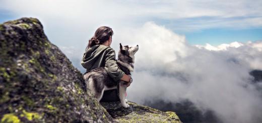 Weltreise mit Hund: Unterwegs mit Vierbeiner