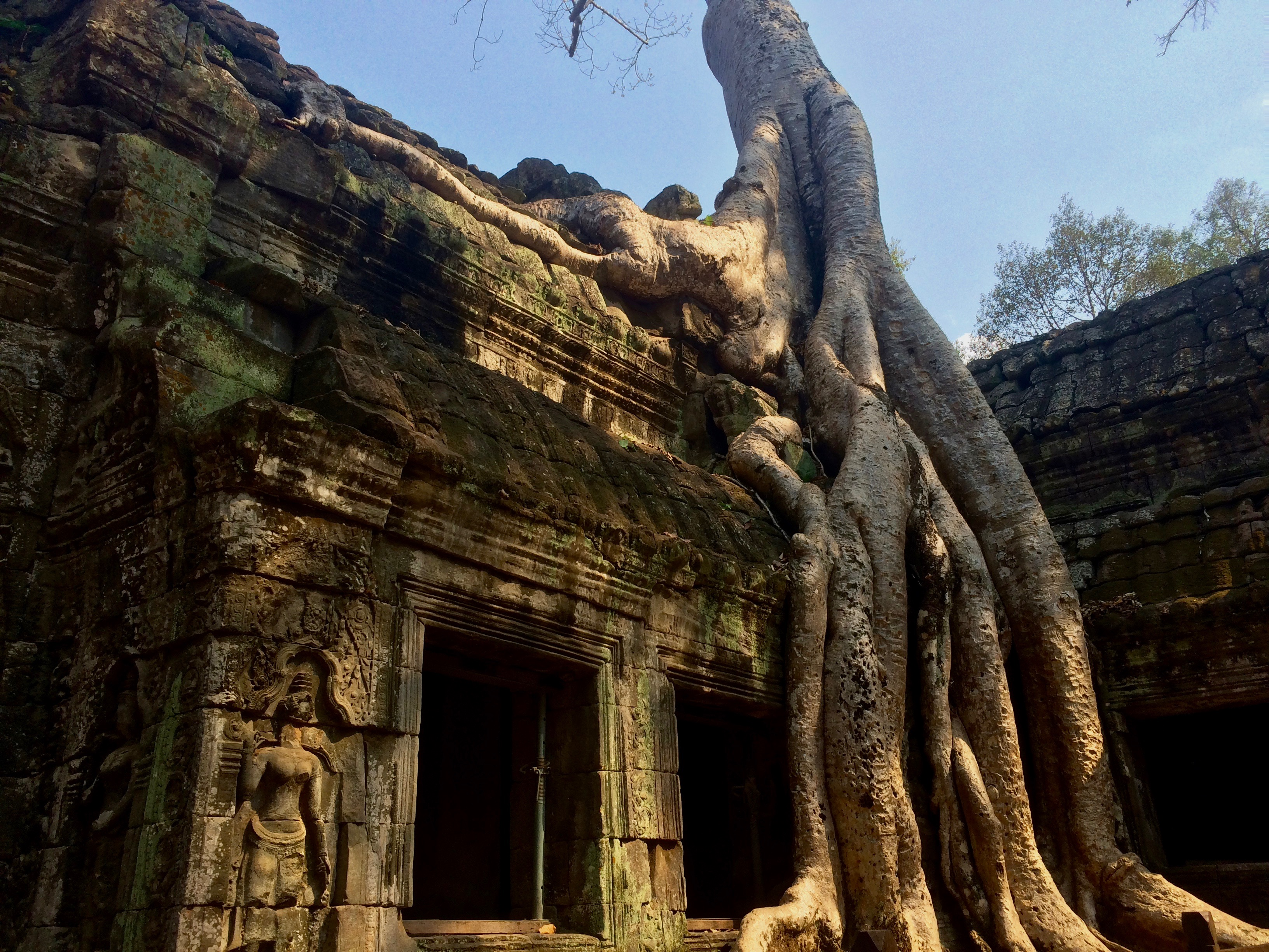 Reisetipp Kambodscha: Angkor Wat gehört auf jede Reiseroute!
