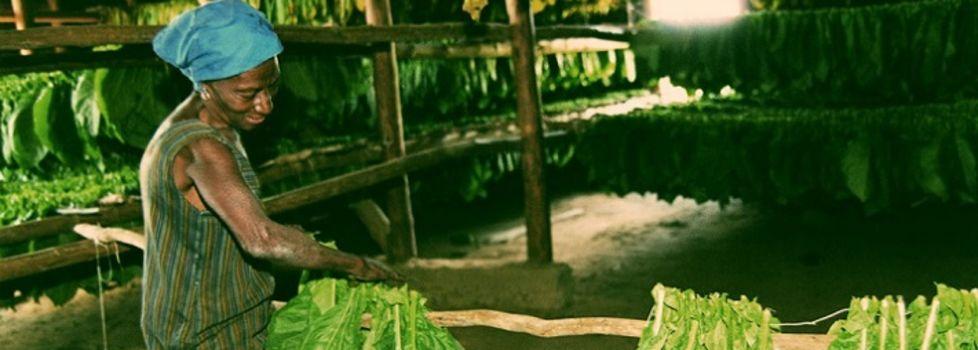 Kuba Reisevorbereitung © www.cubatrotter.com
