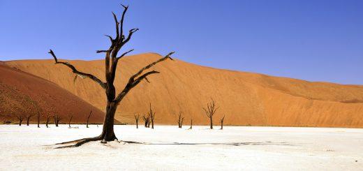 Tipps für deine Namibia Selbstfahrer Rundreise