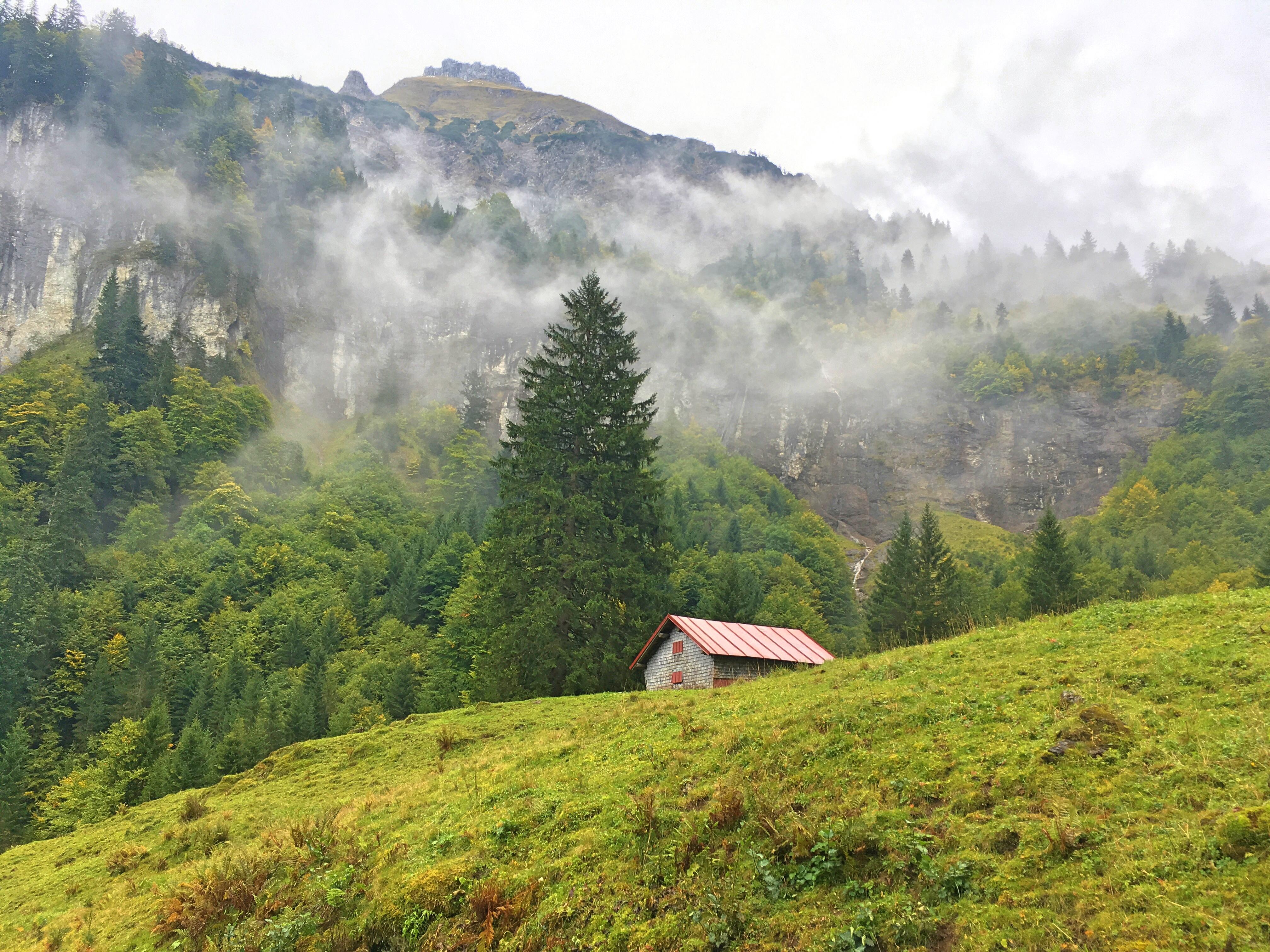 Bergtour Hochvogel: Die erste Etappe führt durch einen idyllischen Wald und vorbei an Wasserfällen.