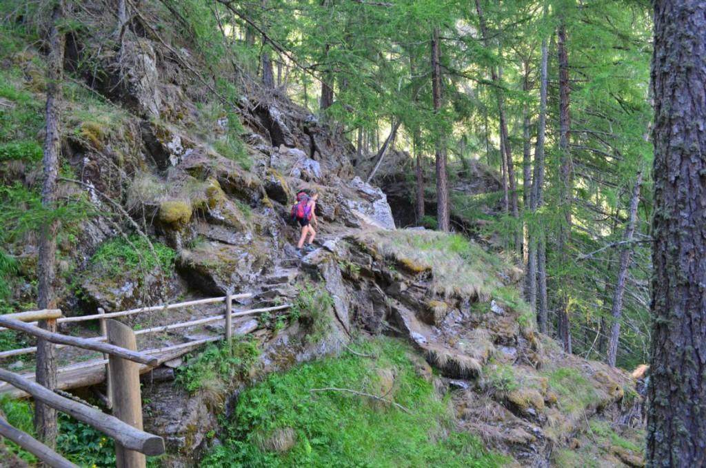 Schmaler Pfade durch den Wald führen nach Giggelberg.