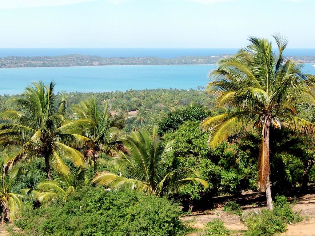 Tauchen an der Praia Tofo in Mosambik