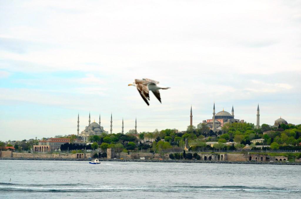 Aussichtspunkte in Istanbul: Blick von der Fähre zu den Prinzeninseln.