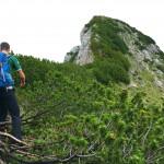Großer Weitschartenkopf auf der Reiter Alpe