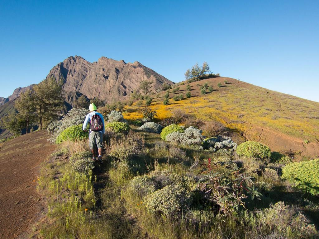 Vulkanwandern auf den Kapverden:Pico do Fogo