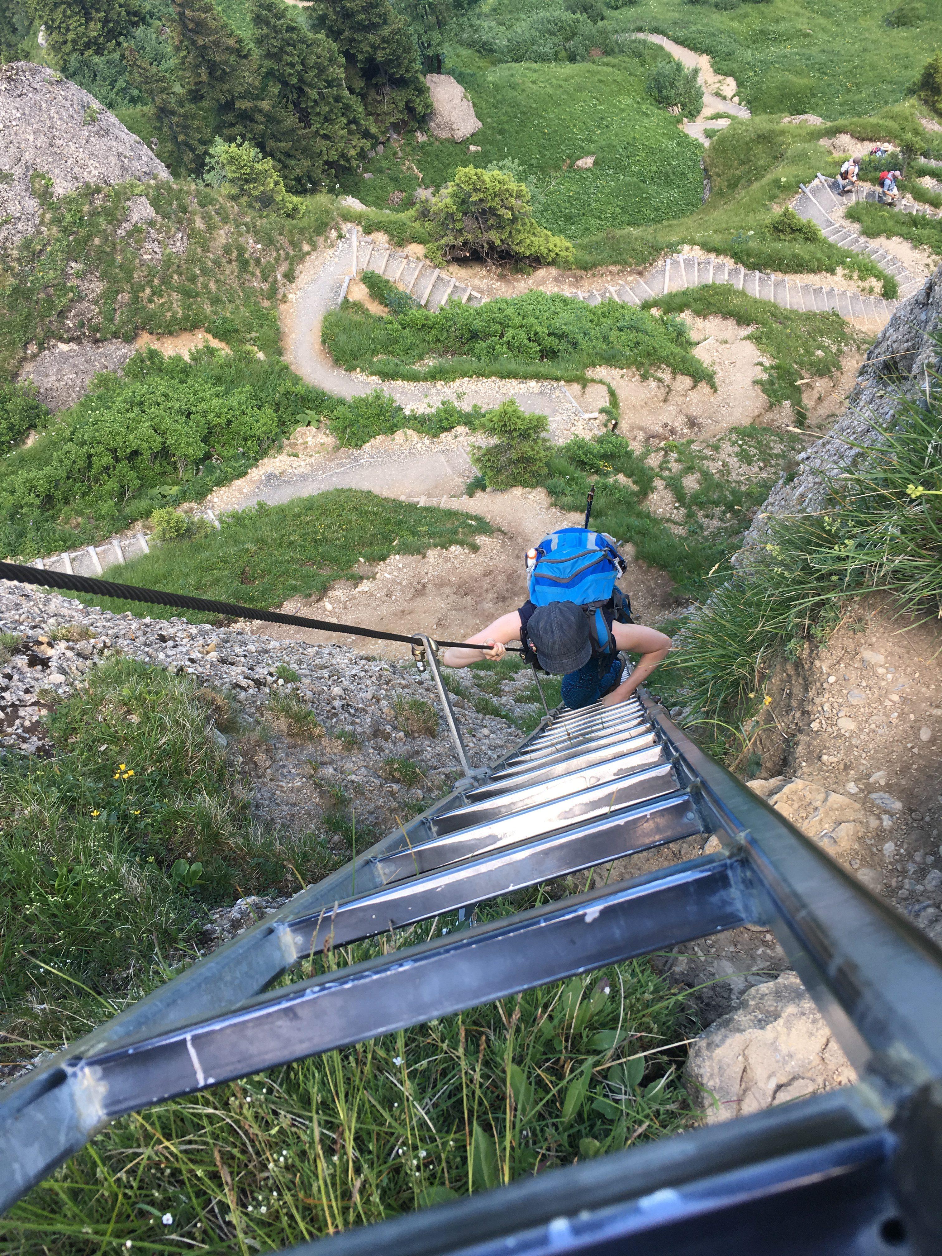 Finaler Aufstieg zum Steineberg über die 17 Meter lange Leiter.