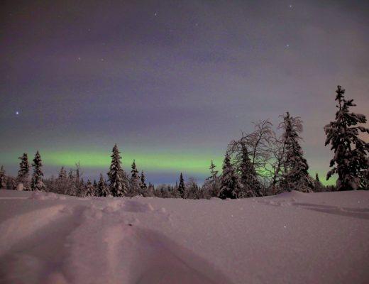 Nordlichter in Finnisch Lappland - ein magischer Moment, den ich mein Leben lang nicht vergessen werde!