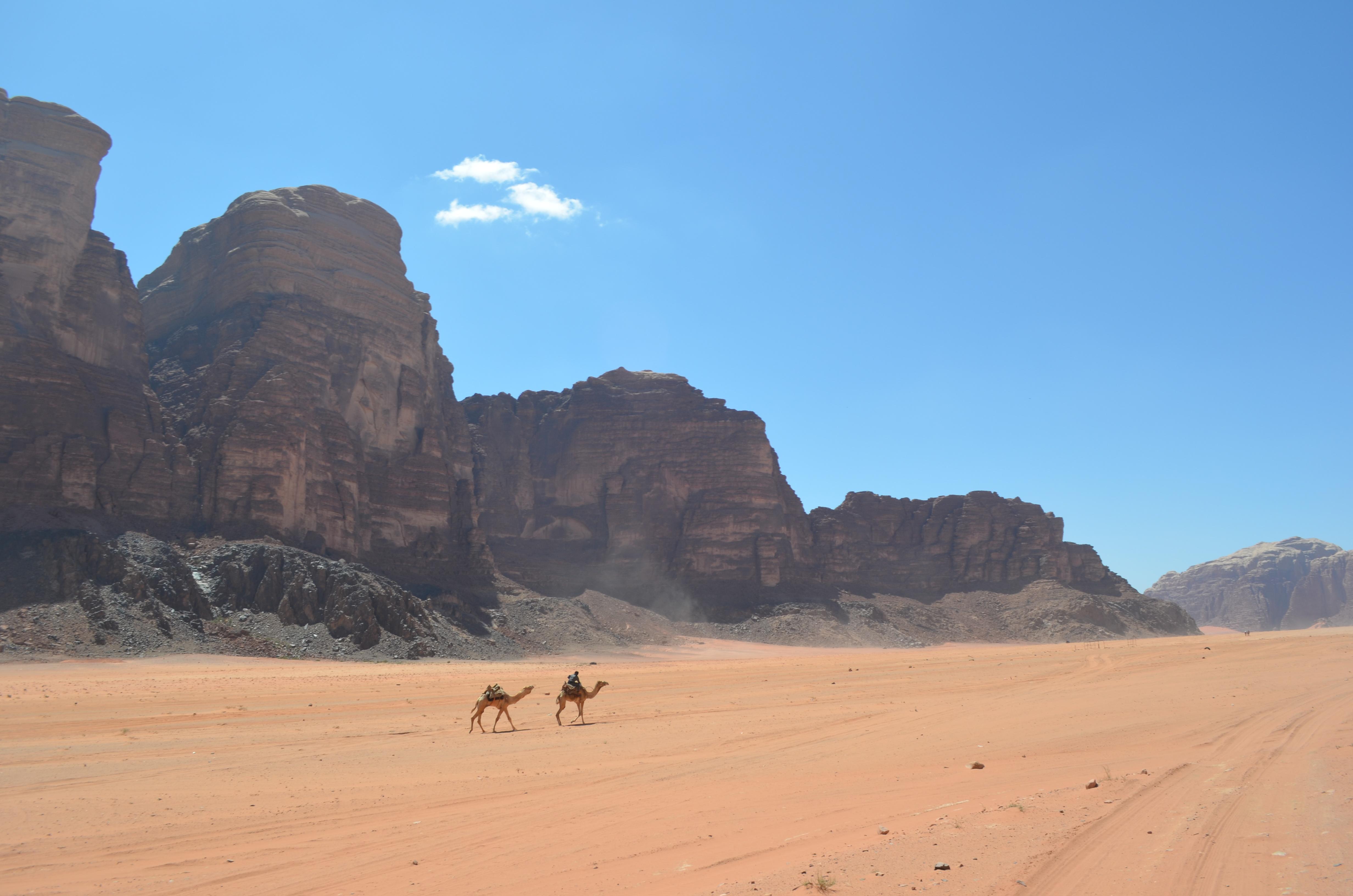 Ganz wichtig: Helfe den Beduinen dabei, ihre Wüste sauber zu halten!