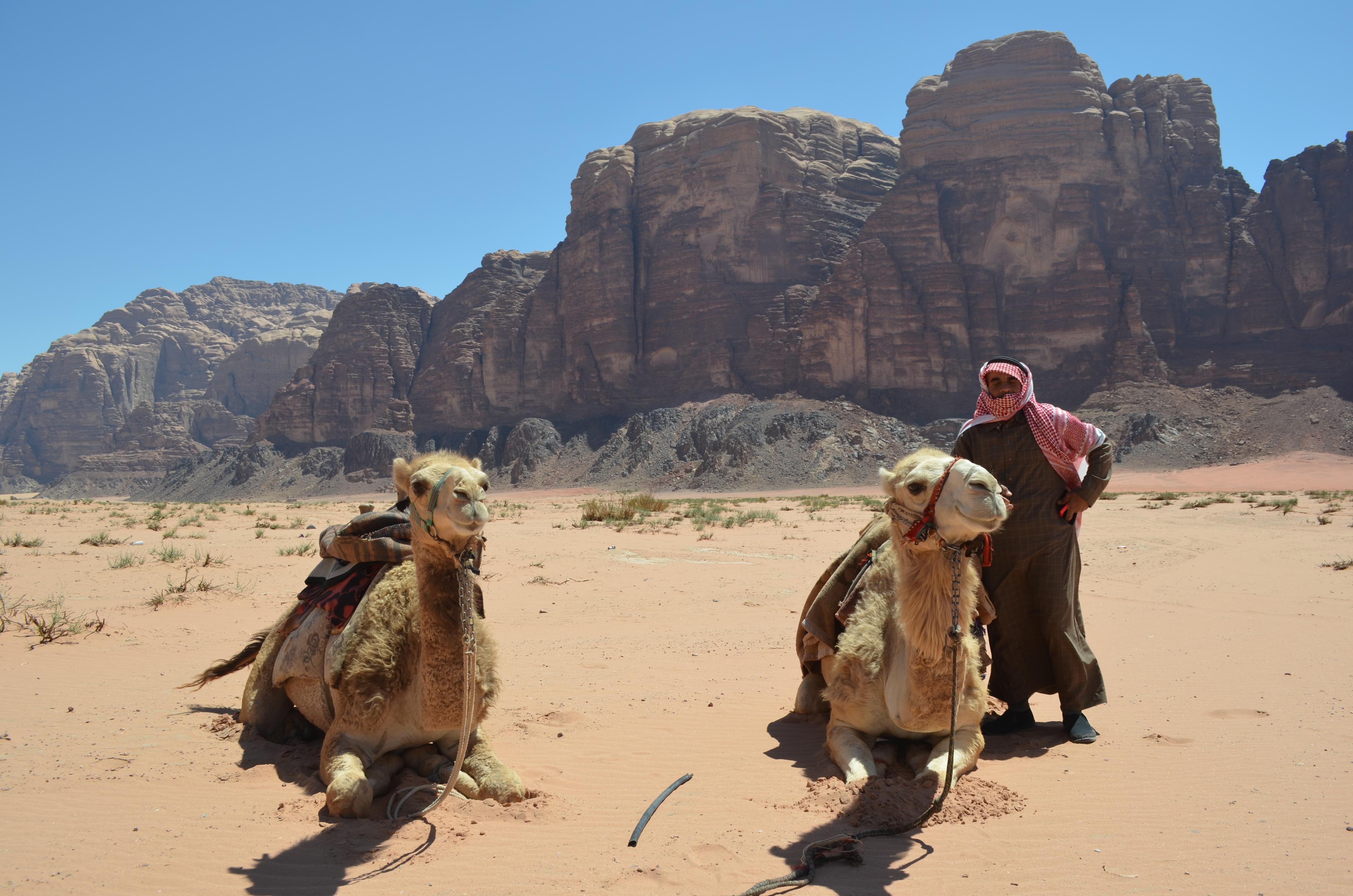 Wadi Rum Reisetipp: Mit dem Kamel durch Jordaniens feuerrote Wüste.