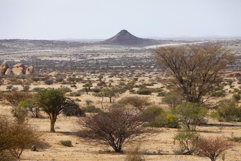Die Landschaft rund um das Spitzkoppe Massiv wirkt wie mit einem Nudelholz ausgerollt. Mal abgesehen von dem ein oder anderen Ameisenhaufen.