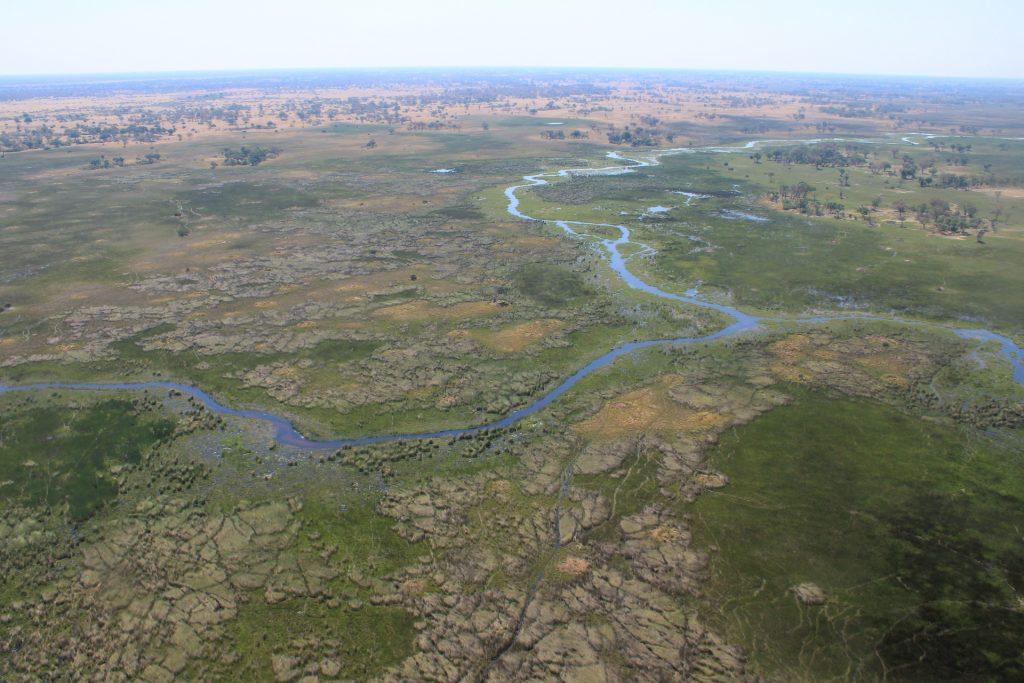Panorama Rundflug überm Okavango Delta: Grasinseln und Wasserarme soweit das Auge reicht.