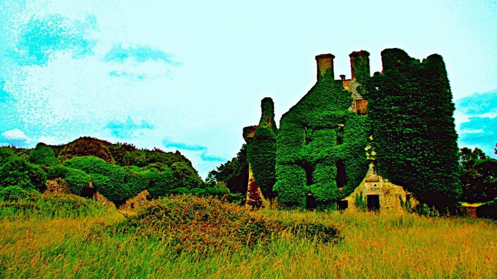 Die Natur holt sich das Menlo Castle in Galway zurück